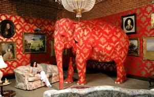 The Elephant In The Living Room Meaning